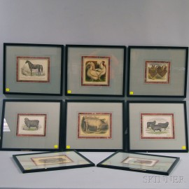 Anglo/American School, 19th Century      Eight Framed Prints of Domestic Animals