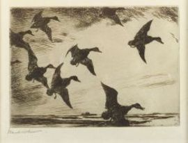 Frank Weston Benson (American, 1862-1951)  Black Ducks at Dusk