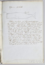 """Handwritten and Hand-drawn """"Descriptions of Whales by Capt. Thos. W. Roys Ship"""