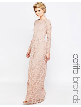 True Decadence Allover Floral Applique Maxi Dress - Blush pink