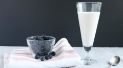 Homemade AIP Coconut Milk Yogurt