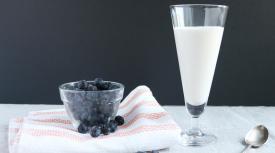 Autoimmune Paleo Coconut Milk Yogurt