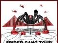 Spider Gang