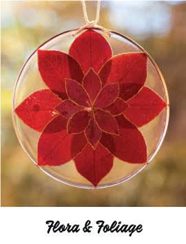 Flora & Foliage - December 5, 2020, 11:00 am