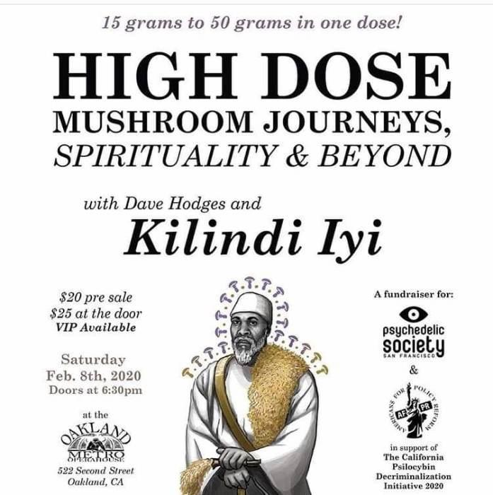 High Dose Mushroom Journeys