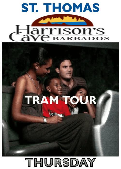 Our Signature Tram Tour