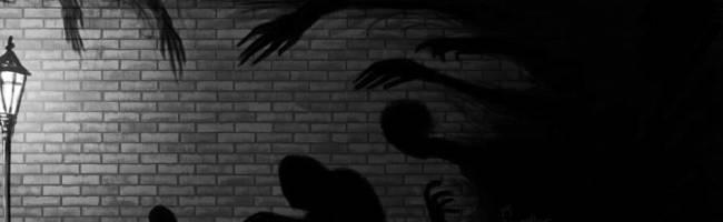 Shadow tamers