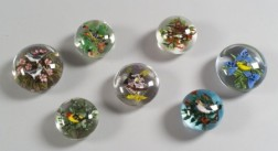Seven Rick Ayotte Glass Paperweights