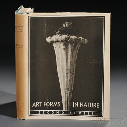 Blossfeldt, Karl (1865-1932) Art Forms in Nature, Second Series.