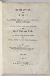 Cassin, John (1813-1869) Illustrations of the Birds of California, Texas, Oregon, British, and Russian America.