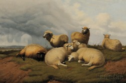 Thomas Sidney Cooper (British, 1803-1902)      Sheep at Rest
