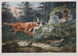 Currier & Ives, publishers (American, 1857-1907)      AMERICAN FIELD SPORTS:  Flush'd