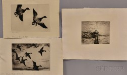 Frank Weston Benson (American, 1862-1951)      Three Images of Ducks and Geese: Canada Goose