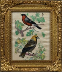 Framed Watercolor on Silk Picture of Birds