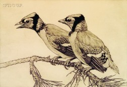 Charles Emile Heil (American, 1870-1950)      Two Young Blue Jays