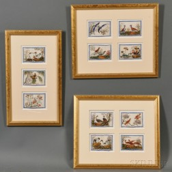 Eleven Ornithological Gouache Paintings in Three Frames
