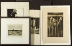 Lot of Twenty-Seven Prints: Including Works by Robert Philippi (Austrian, 1877-1959), Max Pollak (Austrian, 1886-1950), and Erich Wagne