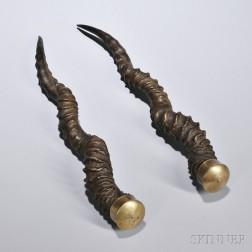 Blackbuck Antelope Horns, 19th century, mounted with brass caps, lg. 15 1/2 in.