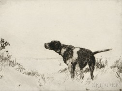 Frank Weston Benson (American, 1862-1951)      Pointer Dog