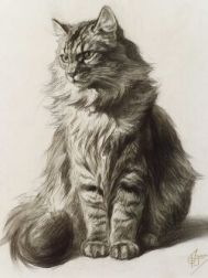Ferdinand Oger (French, 1872-1929)  Study of a Tabby Cat