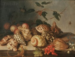 Dutch School, 17th Century Style      Still Life with Shells and Insects