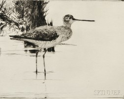 Frank Weston Benson (American, 1862-1951)      Yellowlegs No. 4