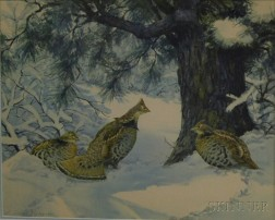 After Aiden Lassell Ripley (American, 1896-1969)      Ruffled Grouse in the Snow.