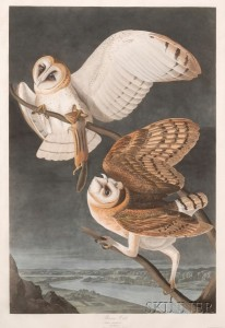 Sold for: $29,375 - Audubon, John James (1785-1851)