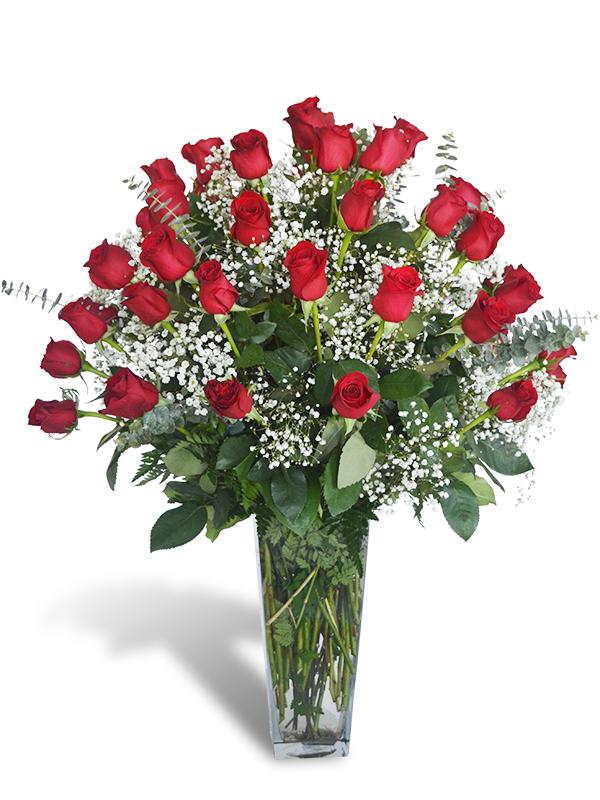 Four Dozen Roses Jupiter Fl Florist