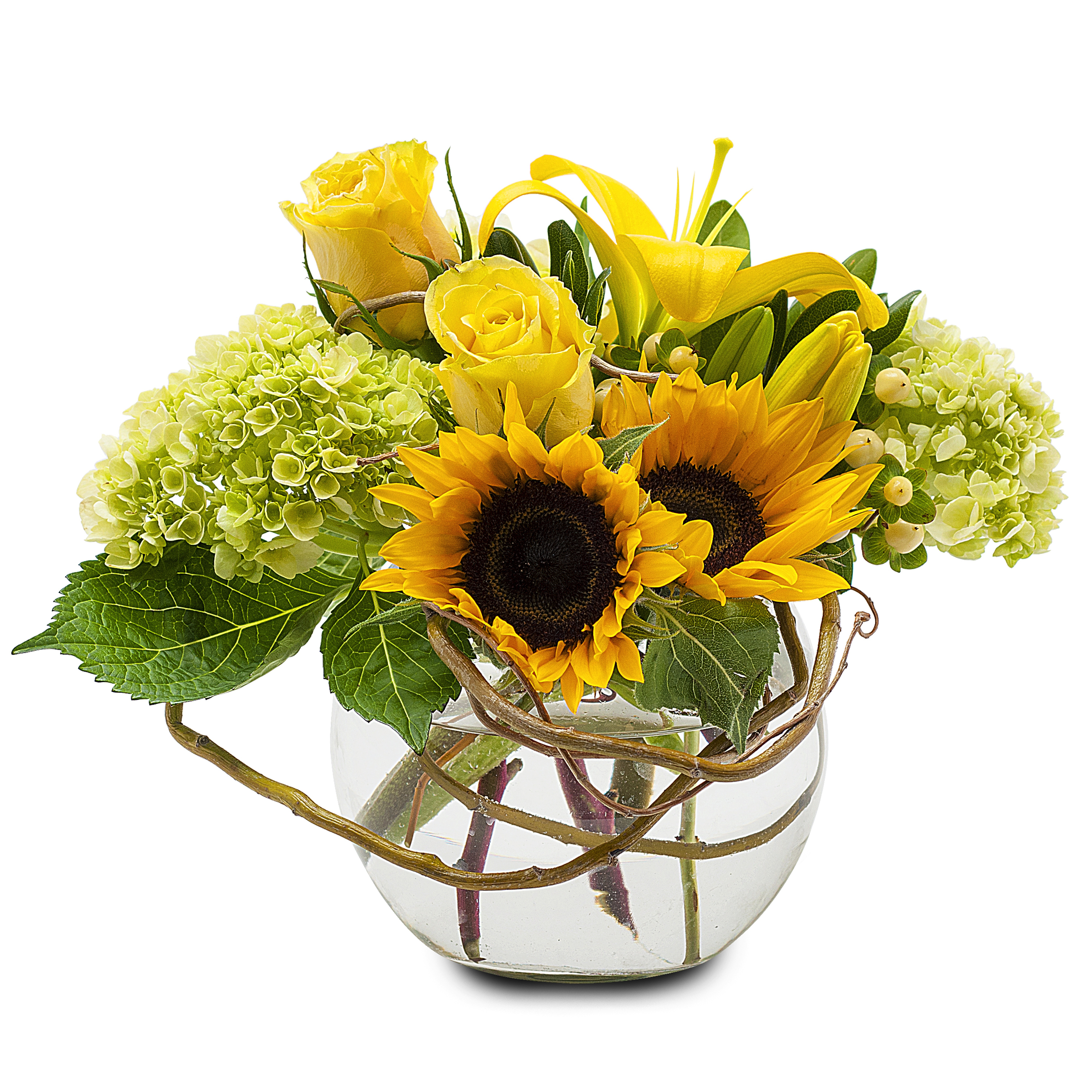 Sunshine rays indio ca florist izmirmasajfo