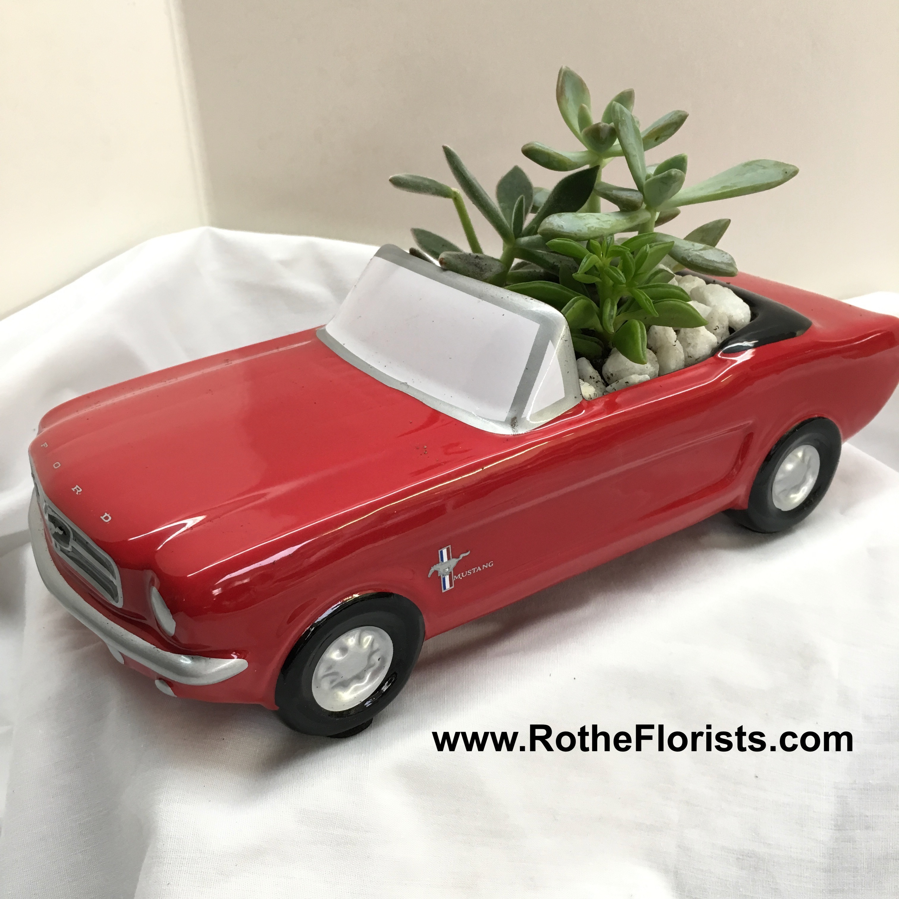 65 Ford Mustang >> 65 Ford Mustang With Succulents
