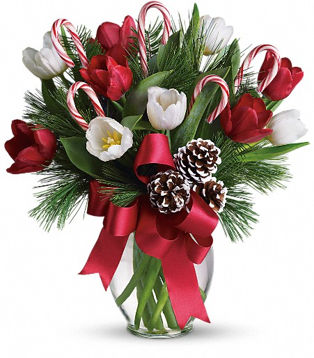 Teleflora Christmas 2019.By Golly It S Jolly