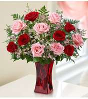 One Dozen Pink & Red Roses in Red Vase