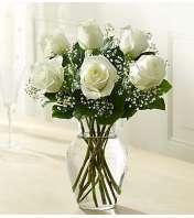 Six White Roses