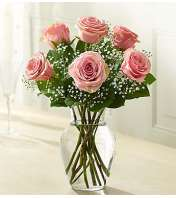 Six Pink Roses