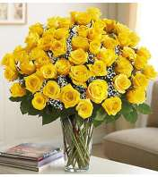 Four Dozen Yellow Roses
