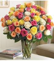 Four Dozen Assorted Roses