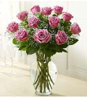 One Dozen Lavender Roses