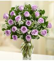 Eighteen Lavender Roses