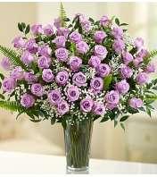 Four Dozen Lavender Roses