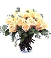 white rose romance