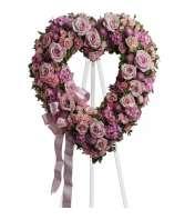 Blush and Bashful Heart