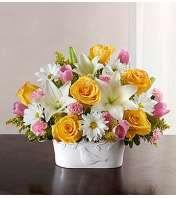 Brighten Your Day Sympathy