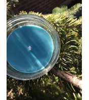 8 oz. Blue Spruce Soy Candle