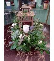 succulent arrangement with lantern