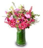 Blushing Spring DW