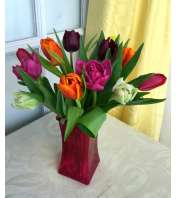Tulips in Hot Pink Square Vase
