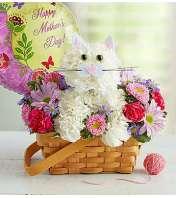 Fabulous Feline™ for Mom