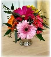 Julep Petite Gerbera Bouquet