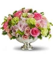 Soft Garden Blooms